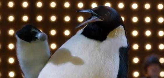 pino-il-pinguino1